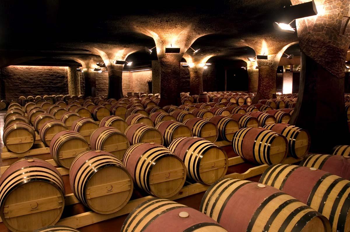 barrica vino tinto crianza