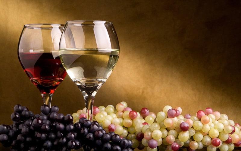 Enología: vino blanco y vino tinto