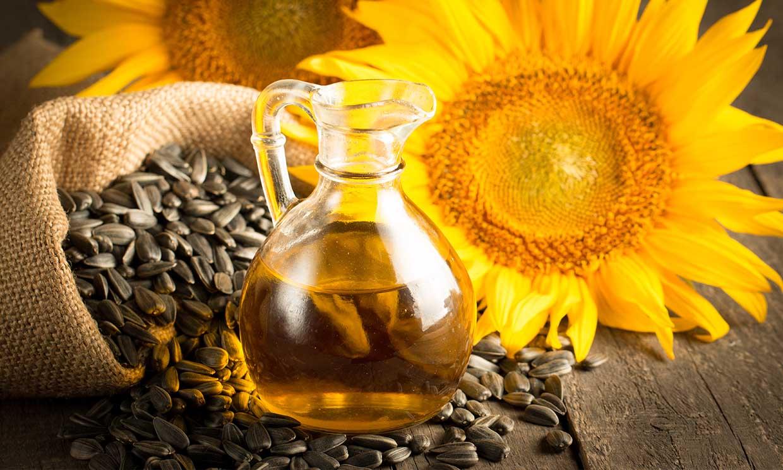 bienfaits de l'huile végétale d'huile de tournesol vénérable