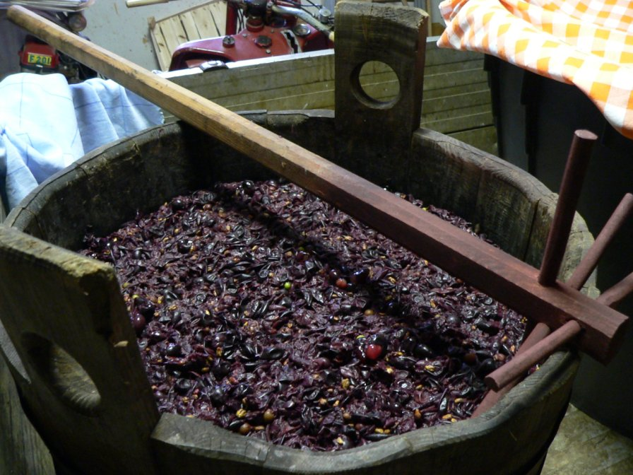 grape must